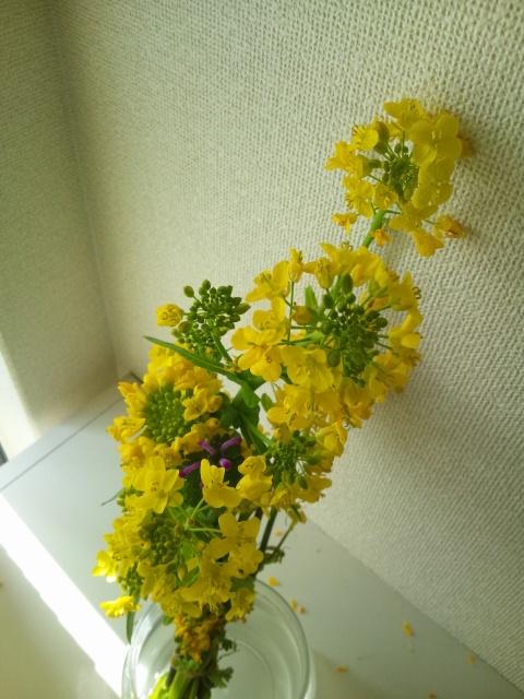 http://arimura-koumuten.com/blog/DSC_0275.JPG